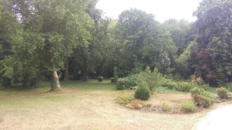 Erlon immobilier : Jardin arboré